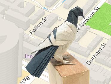PigeonPurch